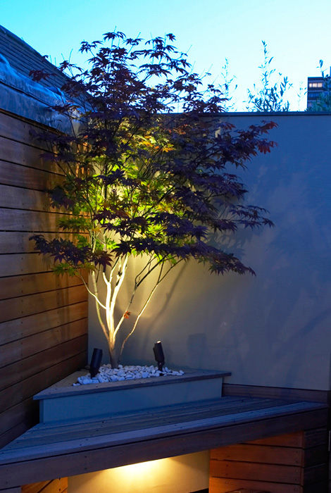 20 Dreamy Garden Lighting Ideas Best Of Diy Ideas
